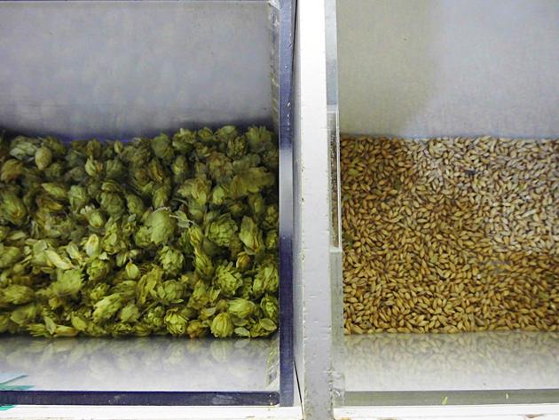 Ингредиенты для производства пива