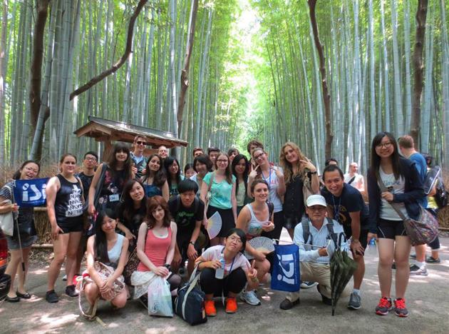 бамбуковый лес, летняя программа