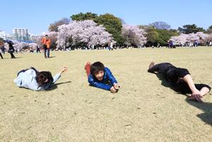обучение в Японии, поход в парк