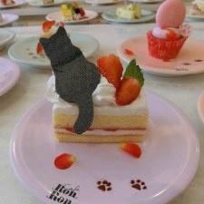 Рай для сладкоежек! Новая кондитерская в Токио