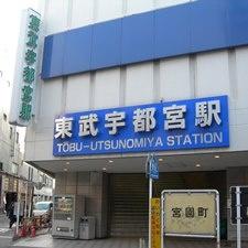 Хотите учиться не в Токио? Знакомьтесь, Уцуномия и школа TIEI!