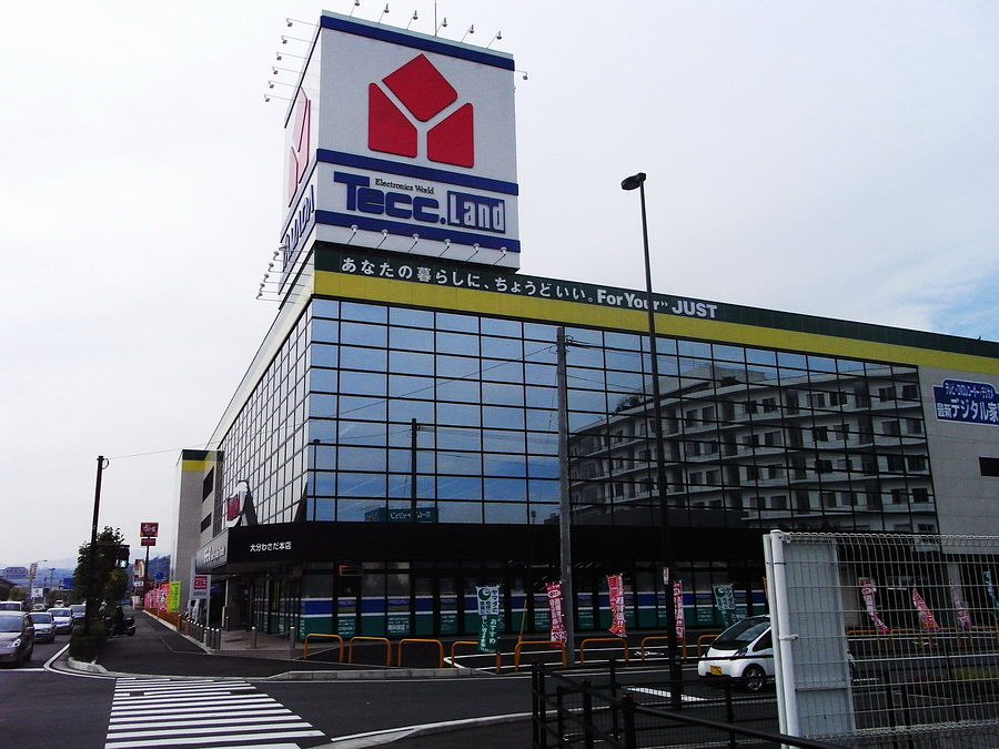 Японские веб магазины с й доставкой в россию электроника